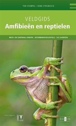 Afbeeldingen van Veldgids Veldgids amfibieën en reptielen