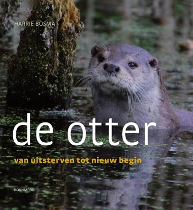 Afbeeldingen van De otter