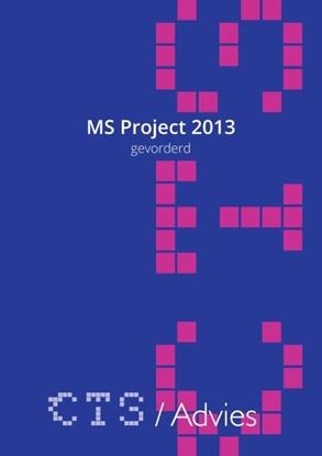 Afbeeldingen van MS Project 2010-2013 Gevorderd