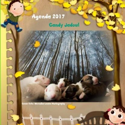 Afbeeldingen van Agenda klein bull terrier friends 2017