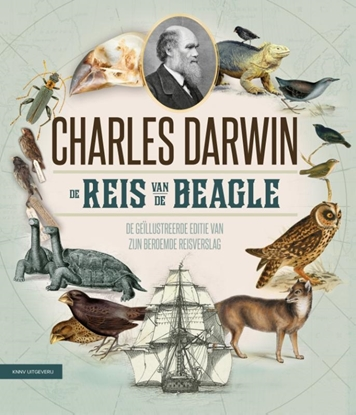 Afbeeldingen van De reis van de Beagle