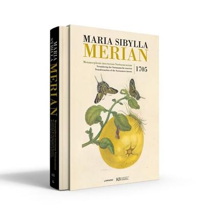 Afbeeldingen van Maria Sibylla Merian. Metamorphosis insectorum Surinamensium