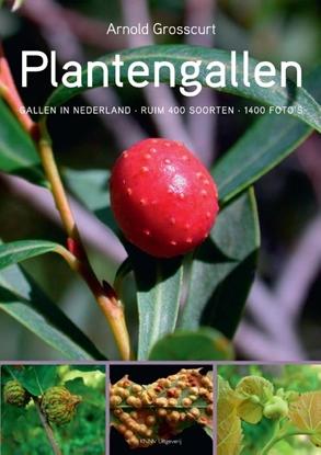 Afbeeldingen van Plantengallen