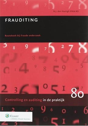 Afbeeldingen van Auditing in de praktijk Frauditing