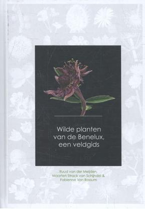 Afbeeldingen van Wilde planten van de Benelux, een veldgids