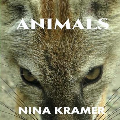 Afbeeldingen van Animals