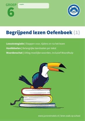 Afbeeldingen van Begrijpend lezen 1 Groep 6 Oefenboek
