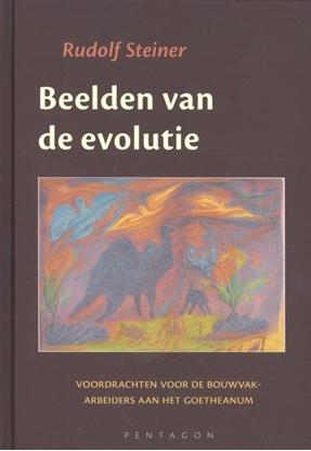 Afbeeldingen van Beelden van de evolutie