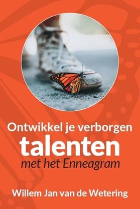 Afbeeldingen van Ontwikkel je verborgen talenten met het enneagram