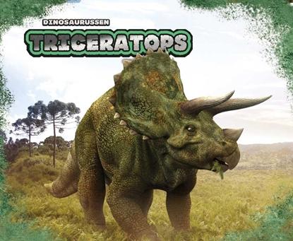 Afbeeldingen van Dinosaurussen Triceratops