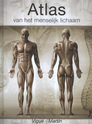 Afbeeldingen van Atlas van het menselijk lichaam