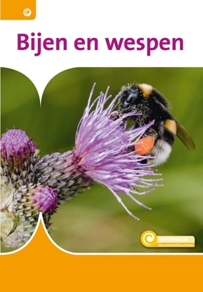 Afbeeldingen van Informatie Bijen en wespen