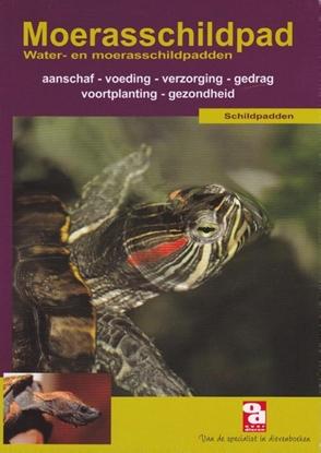 Afbeeldingen van Over Dieren De moerasschildpad