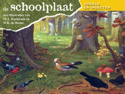 Afbeeldingen van De Schoolplaat Vogels en Insecten