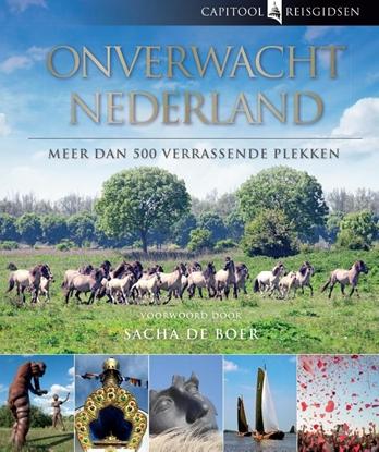 Afbeeldingen van Capitool reisgidsen Onverwacht Nederland
