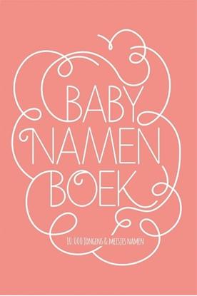 Afbeeldingen van Babynamenboek