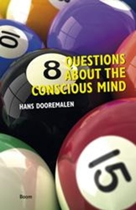 Afbeeldingen van 8 Questions about the conscious mind