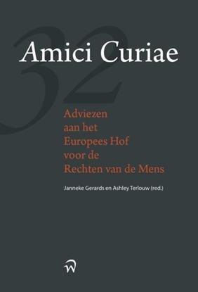 Afbeeldingen van Amici Curiae, adviezen aan het Europese hof voor de rechten van de mens
