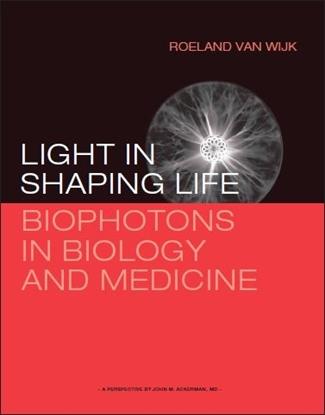 Afbeeldingen van Light in shaping life
