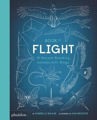 Afbeeldingen van Book of Flight