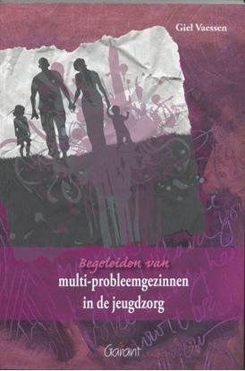 Afbeeldingen van Begeleiden van multi-probleemgezinnen in de jeugdzorg