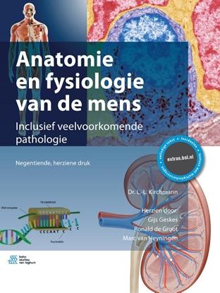 Afbeeldingen van Anatomie en fysiologie van de mens
