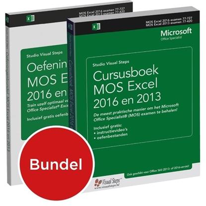Afbeeldingen van Cursusboek MOS Excel 2013 Basis + extra oefeningen