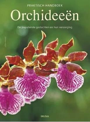 Afbeeldingen van Praktisch handboek orchideeen