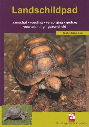 Afbeeldingen van Over Dieren De landschildpad