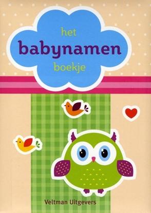 Afbeeldingen van Babynamen boekje