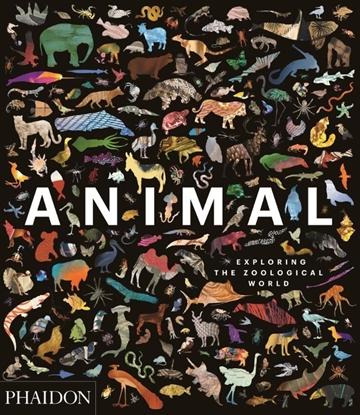 Afbeeldingen van Animal: Exploring the Zoological World