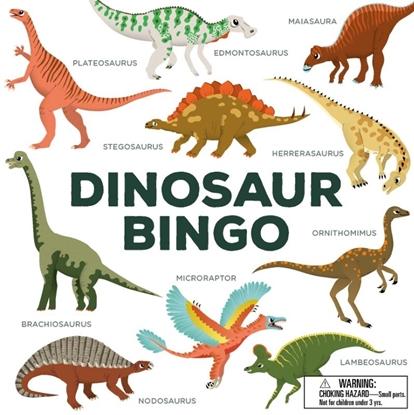 Afbeeldingen van Dinosaur Bingo