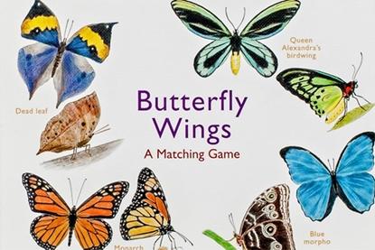 Afbeeldingen van Butterfly Wings