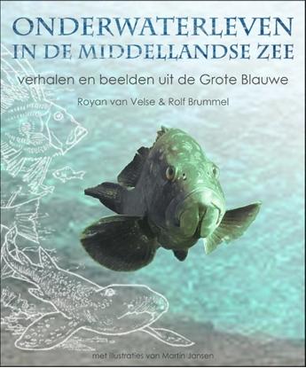 Afbeeldingen van Onderwaterleven in de Middellandse zee