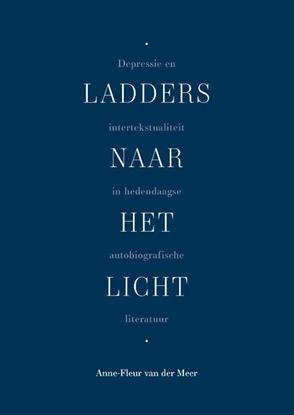 Afbeeldingen van Ladders naar het licht