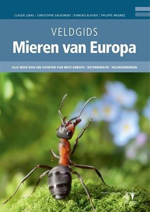 Afbeeldingen van Veldgids Mieren van Europa