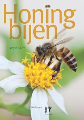 Afbeeldingen van Honingbijen