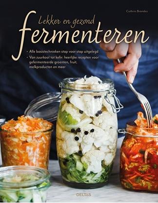 Afbeeldingen van Lekker en gezond fermenteren