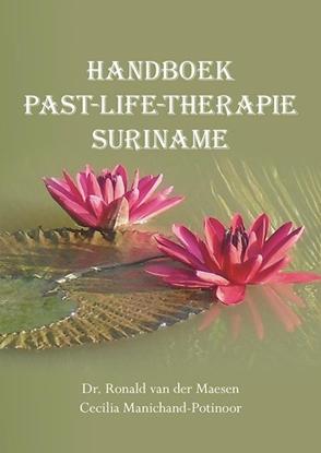 Afbeeldingen van Handboek past-life-therapie Suriname