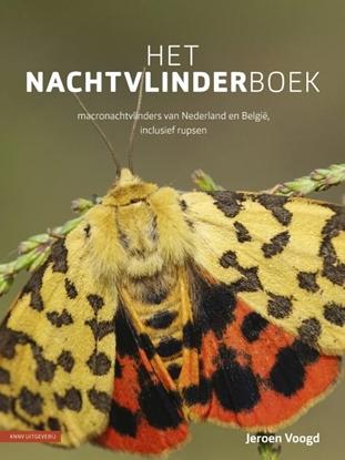 Afbeeldingen van Het nachtvlinderboek