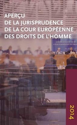 Afbeeldingen van Aperçu de la jurisprudence de la Cour européenne des droits de l'homme 2014