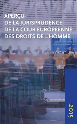 Afbeeldingen van Aperçu de la jurisprudence de la Cour européenne des droits de l'homme 2015
