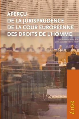 Afbeeldingen van Aperçu de la jurisprudence de la Cour Aperçu de la jurisprudence de la Cour européenne des Droits de l'Homme 2017