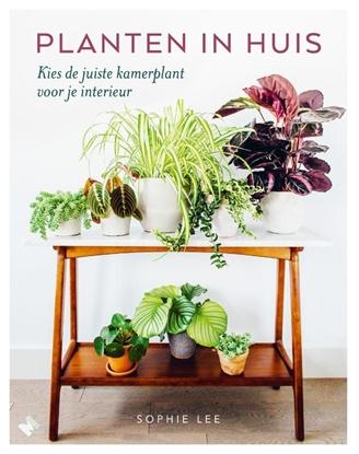 Afbeeldingen van Planten in huis