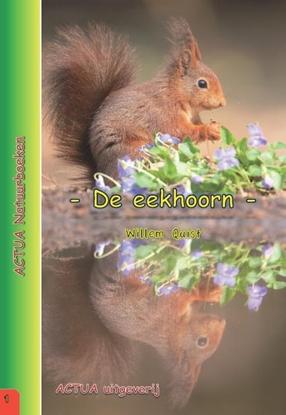 Afbeeldingen van ACTUA Natuurboeken De eekhoorn