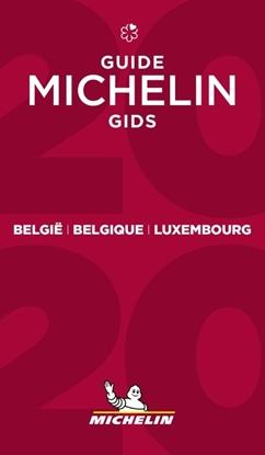 Afbeeldingen van *MICHELINGIDS BELGIE LUXEMBURG 2020