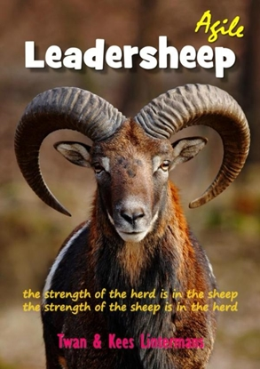 Afbeeldingen van Agile leadersheep