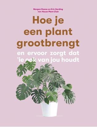 Afbeeldingen van Hoe je een plant grootbrengt
