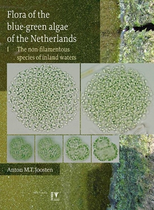 Afbeeldingen van Flora of the blue-green algae of the Netherlands 1