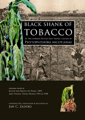 Afbeeldingen van Black shank of tobacco in the former Dutch East Indies, caused by Phytophthora nicotianae